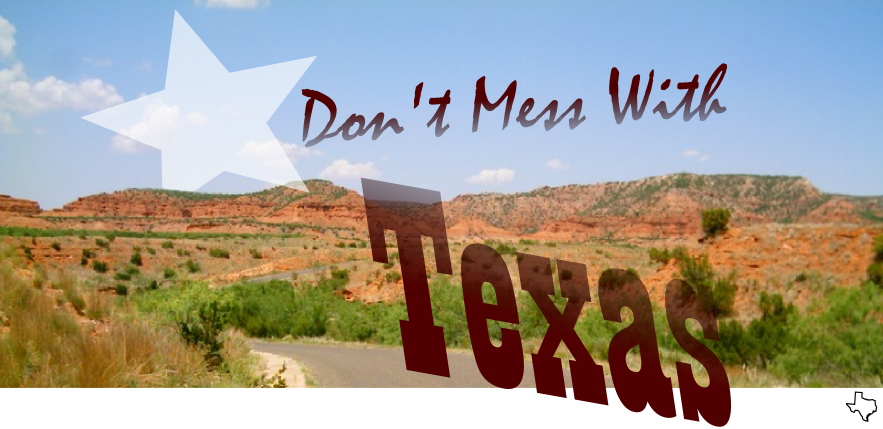 Don't Mess With Texas !