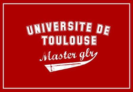 university of toulouse2